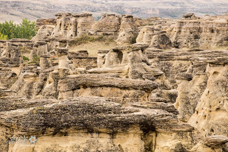 Behold, the Badlands of southern Alberta!
