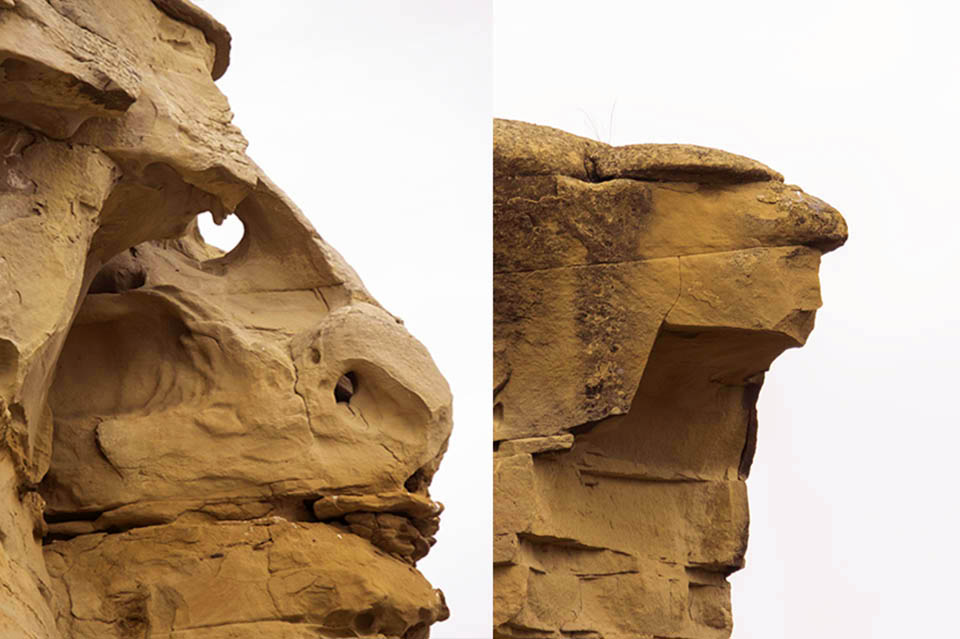 Who says nature doesn't have a sense of humour!