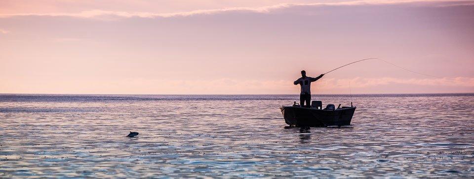 Fisherman hope to catch salmon