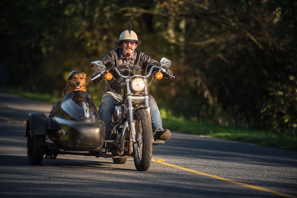 motorcyclist with dog in sidecar.