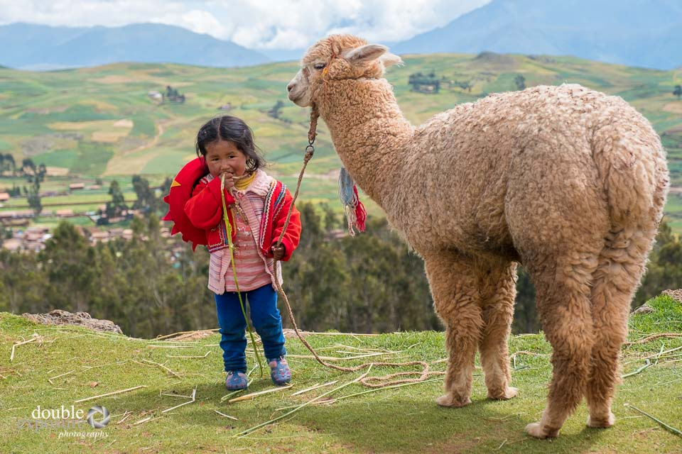 a child and a llama in the Andes mountains.