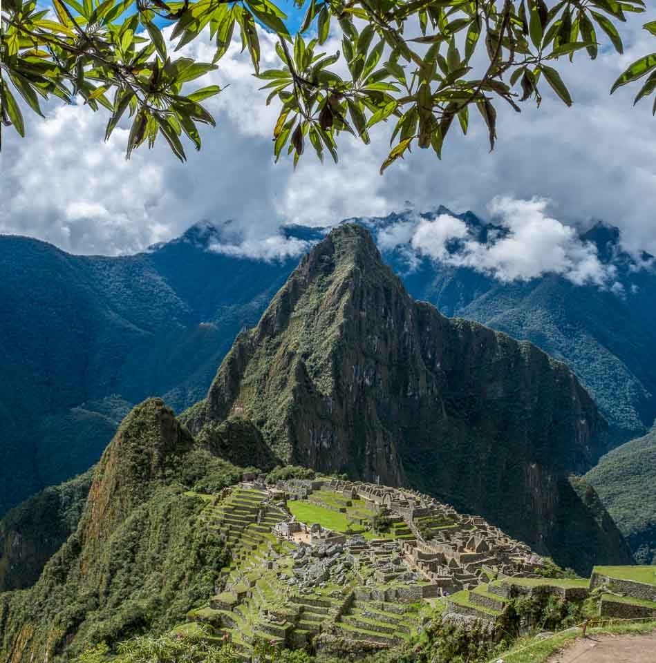 vegetation grows well around Machu Picchu