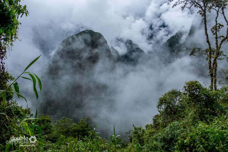 A jungle atmosphere around Machu PIcche in the rain.