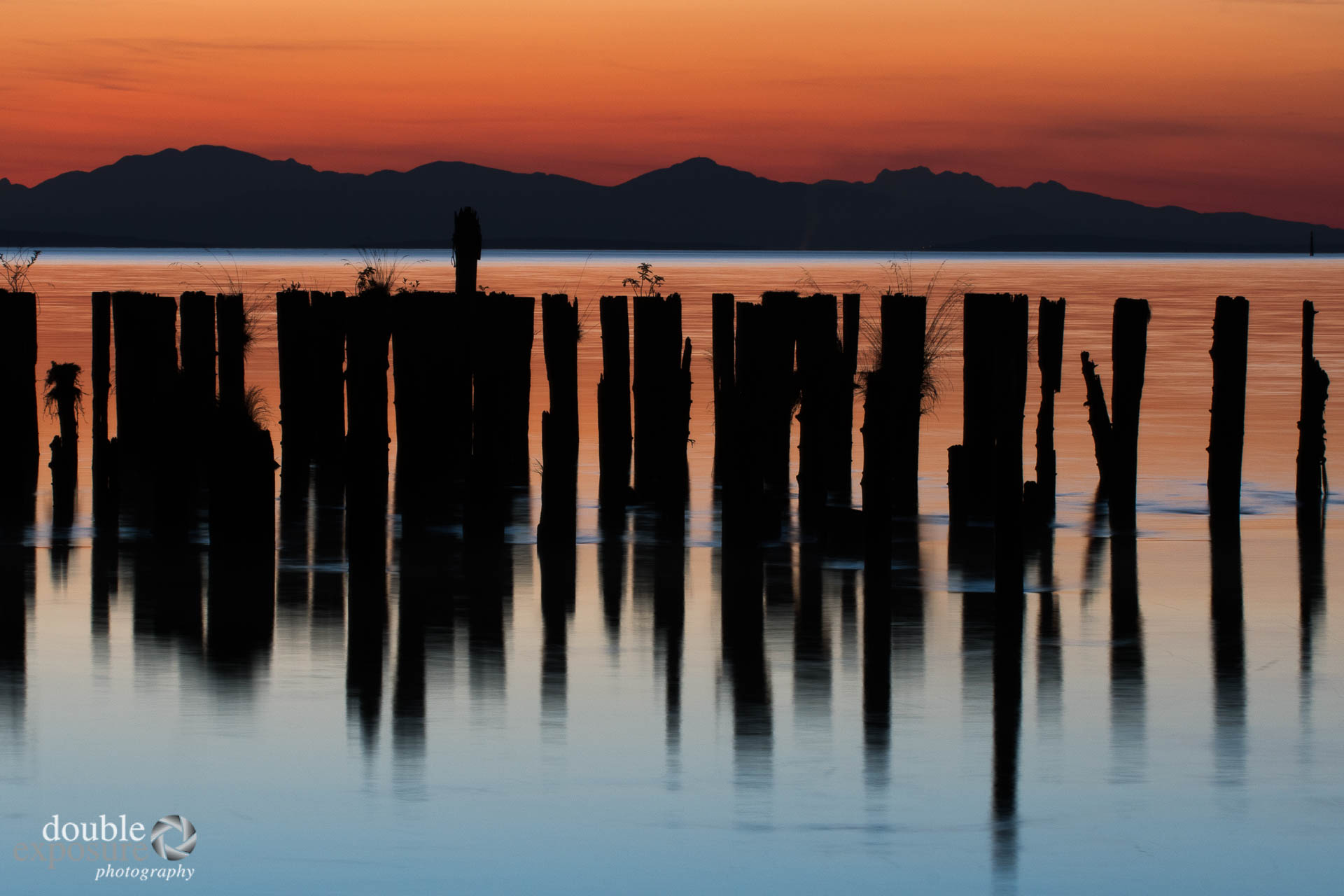Old pilings in river with sunset
