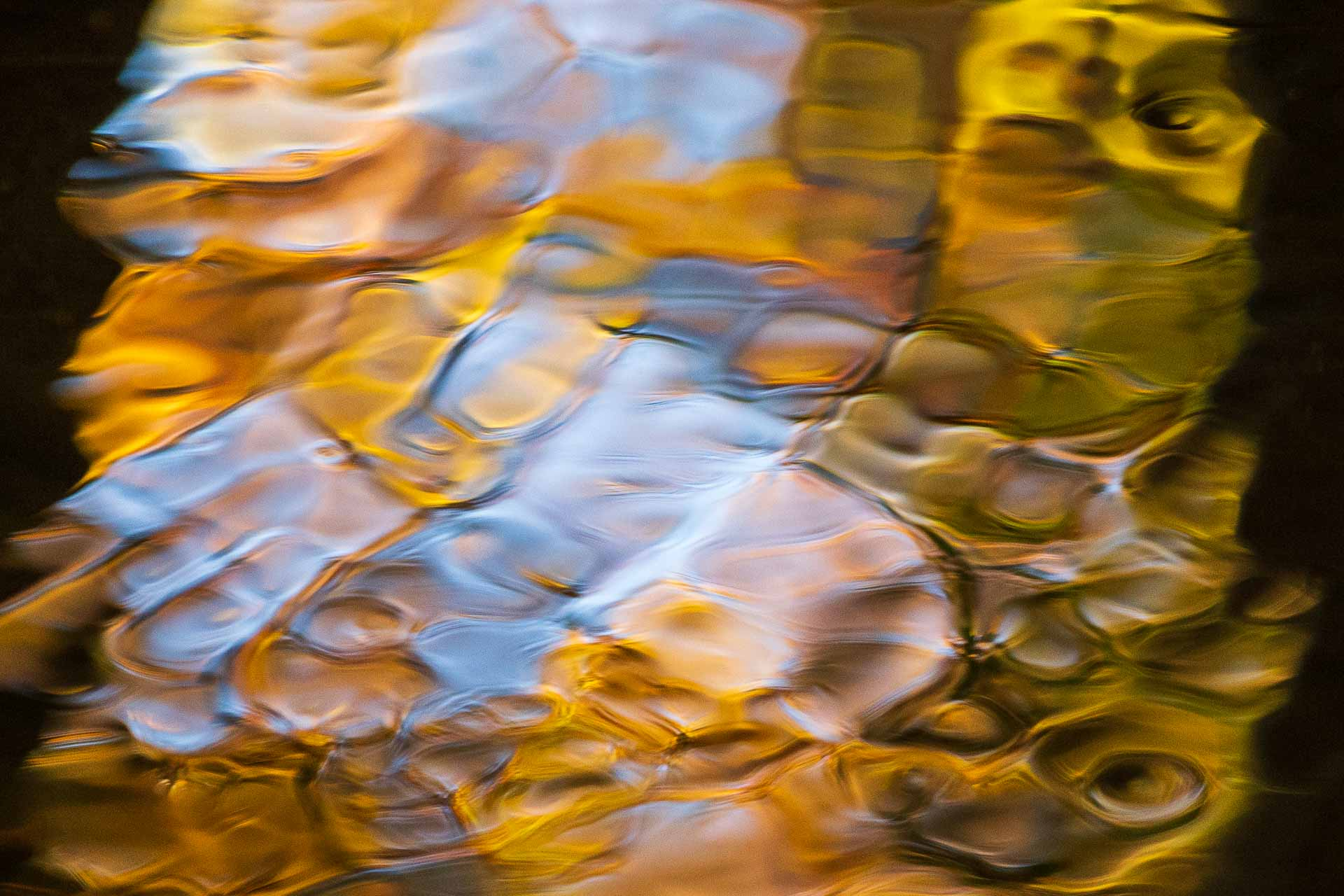 reflections of blue and gold, fine art photography Dennis Ducklow